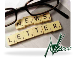 NEWS LETTER -  New Office 2000 S.r.l.